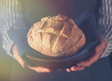 Freshly baked homemade bread in the hands of a baker. Stock Photo