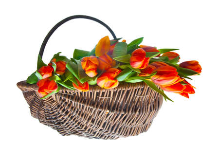 orange tulips basket for easter and dutch queensday