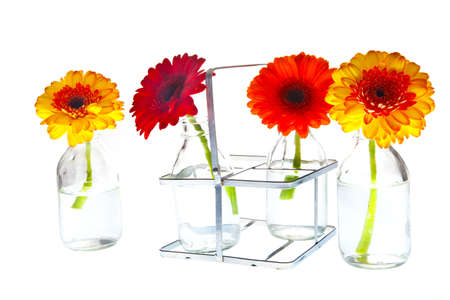different colored springflowers in tray with vases Stock Photo