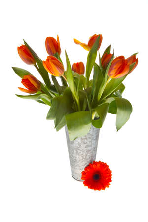 orange springflowers for dutch queensday and easter Stock Photo