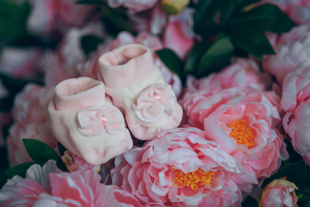 booties: Pink booties in the colors of the peonies. Pregnancy. Stock Photo