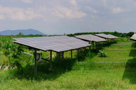 Solar Panels in a green field photo