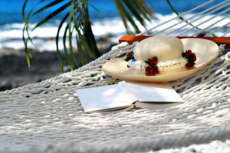 beach resort: illustration of hammock in beach