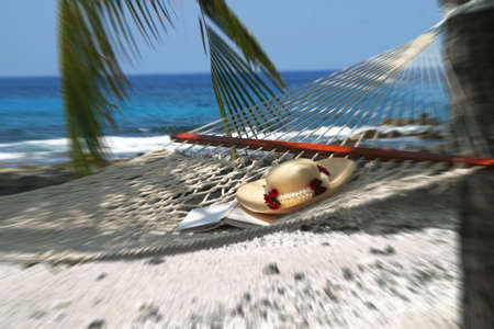 illustration of hammock in beach