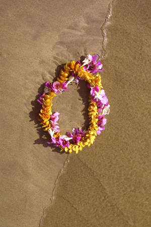 Lei at waters edge in Hawaii Imagens
