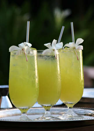 Tropical drinks with orchids