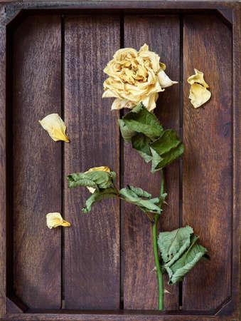 Yellow dried rose petals on wooden boards brown color Banco de Imagens - 86671524