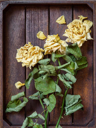 Yellow dried rose petals on wooden boards brown color Banco de Imagens - 86671525