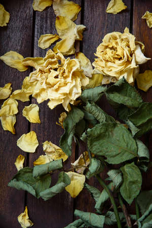 Yellow dried rose petals on wooden boards brown color Banco de Imagens - 86671526