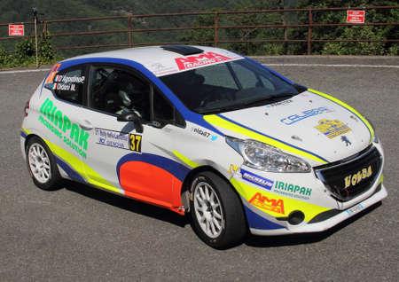 rally: Peugeot 208 rally