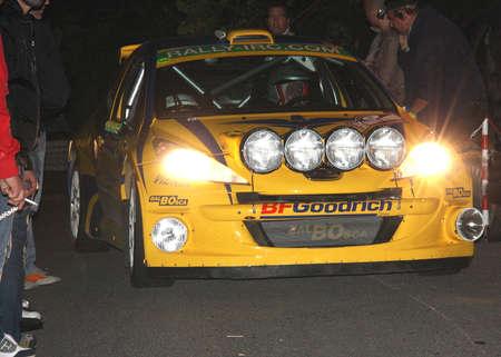 sanremo: Peugeot 207 Super 2000 Rally Sanremo 2013