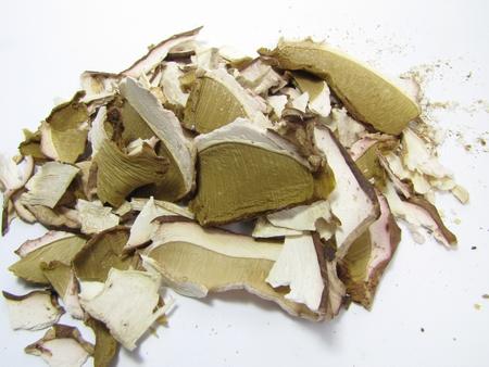 dried boletus edulis isolated on white