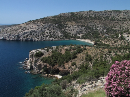 Rocky coast, Livadi beach and pink oleander under the blue sky photo