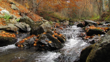small overfall in autumn colours photo