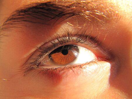 sun s: Riflesso del sole con gli occhi marrone giovane ragazza s