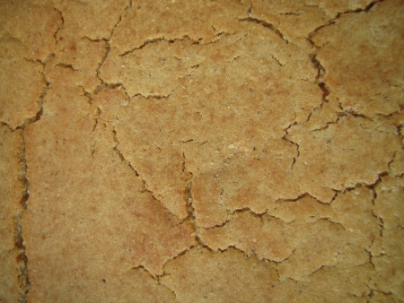 Cracked surface - crust of corn bread background  photo