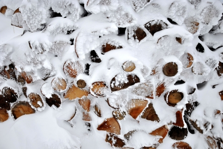 Pile of beech firewood covered by frozen snow Stock Photo - 17622883