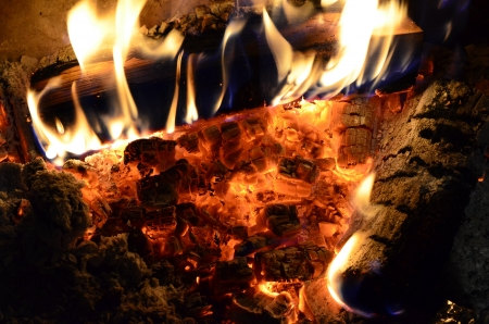 ember: Beech and birch firewood burning over decaying coals and ember in a fireplace