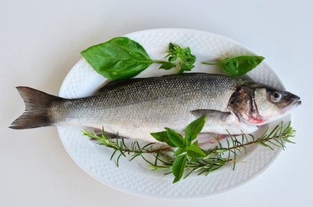 dorade: Fresh fish in a kitchen - seabass with green basil and rosemary on white porcelain oval plate, ready for barbecue Stock Photo