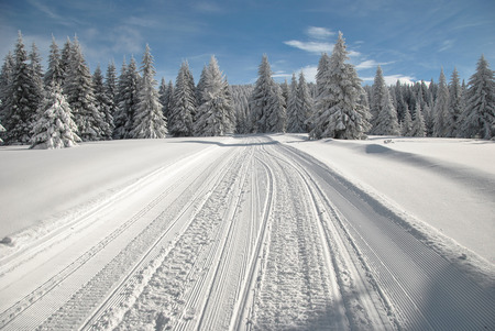 Ski slope and snowy road through spruce forest with snowmobile tracks in a bright winter day photo
