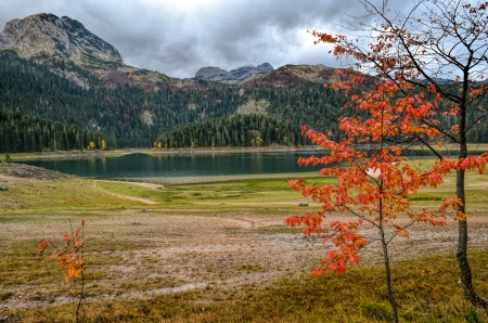 Glacial lake, clouds and small tree in fall colors photo