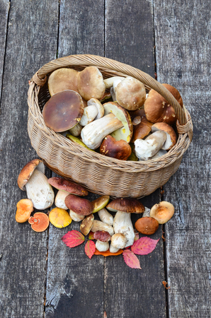 cep: Top view on basket of fresh edible mushrooms on old oak wooden table Stock Photo