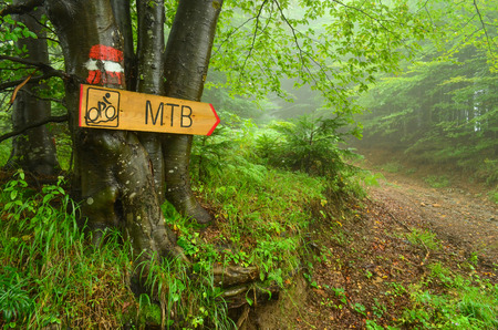Hiking guide mark  and bike route signboard  on beech three, pointing bike path through foggy forest photo