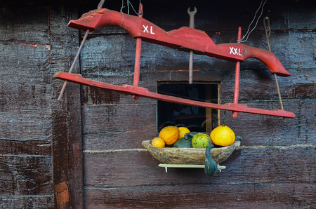 xl: Yoke with XL and XXL mark and yellow and green pumpkins in wooden vessel against wooden wall Stock Photo