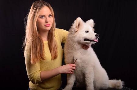white fur: Muchacha joven peluquero canino recorte de piel blanca de perro siberiano Samoyedo