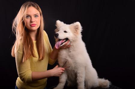 white fur: Peluqueria canina joven recorte de piel blanca de perro Samoed siberiano