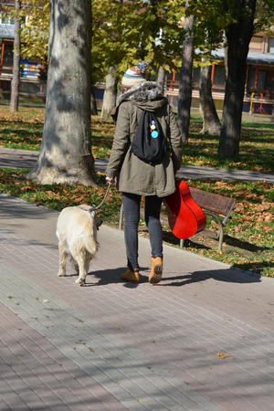 view from behind: Young girl with wool cap, red guitar and small backpack walking with her golden retreiver dog in a park, view from behind