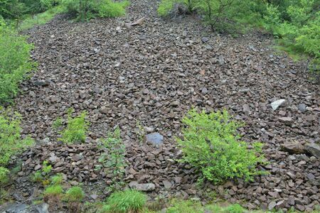 Geological phenomenon, stone landslide as river of rocks, wet under spring rain, with light green spring vegetation at the foot of rocky mountain,horizontal orientation Stock Photo