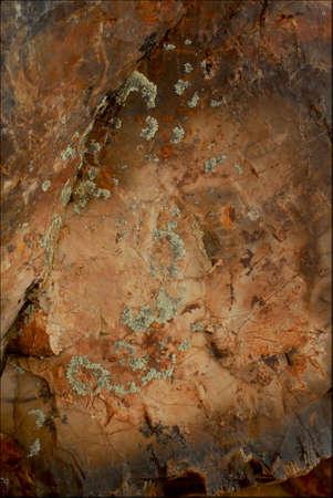 vulcanization: Petrified Forest Santa Cruz Argentina