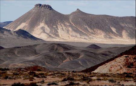 petrified: Petrified Forest Santa Cruz Argentina
