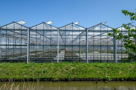 Frontal view of a commercial glass greenhouse in Westland in the Netherlands