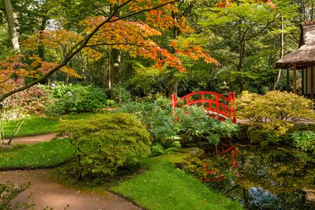 Fall colours in the beautiful and peaceful Japanese garden with a pond leading to a pagoda in park Clingendael, The Hague, Netherlands Banque d'images