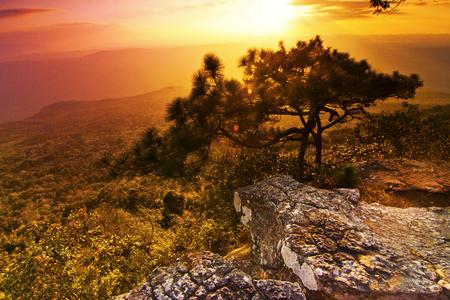 kradueng: Phu Kradueng National Park,Thailand