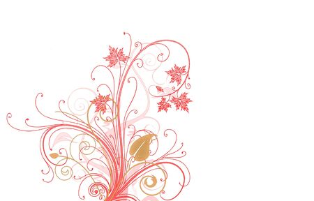 Floral illustraction on white backgroung