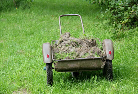Wheelbarrow loaded by a ground on a lawn photo