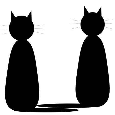 Two black cats on white photo