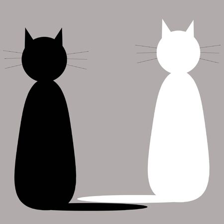 Two cats on grey background photo