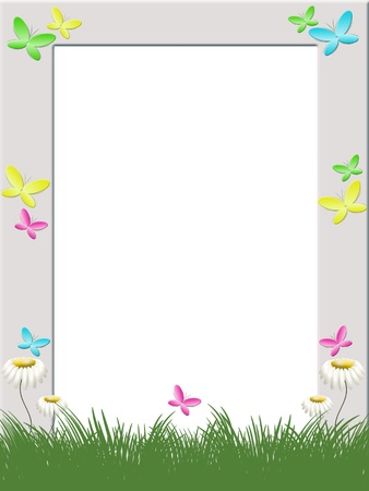 photo frame with grass, flowers camomiles and butterflies photo