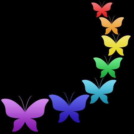 Colorful butterflies on black background photo