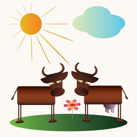 Cartoon cow and bull  Vector