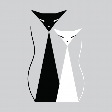 black cat: Cats black and white