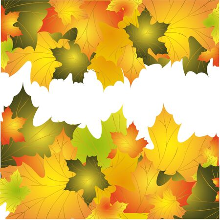 Autumn background with colorful leaves of maple Vector