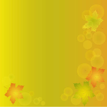 Autumn background with leaves of maple eps10  Vector