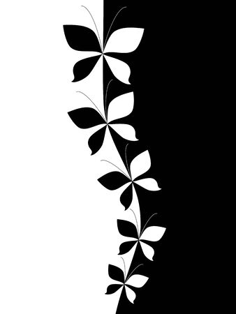 Black and white background cover  Vector