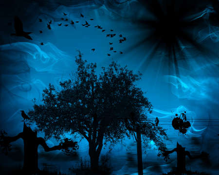 scary forest: Dark scary night background