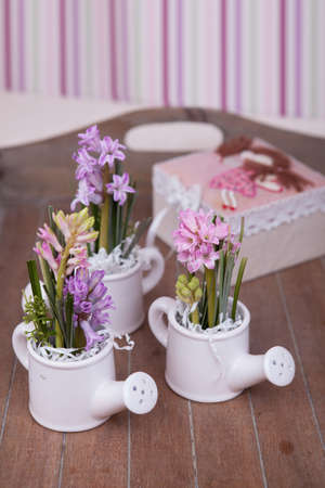 kettles: Hyacinth flowers bouquet in kettles composition Stock Photo